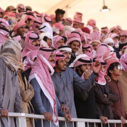 """دِق"""" و""""جِل"""" و""""فحل"""" تضبط إيقاع التنافس في """"فردي"""" مهرجان الملك عبد العزيز للإبلئئ 0"""