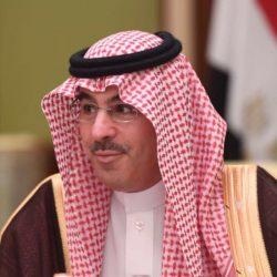 الأمير خالد الفيصل يوافق على إنشاء محطة تحليه في مركز يلملم