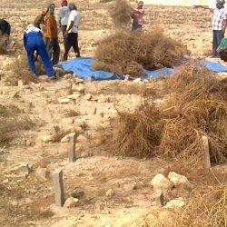 1000 جولة تفتيشية بالجوف تنتهي بإغلاق 14 منشأة ومصادرة مواد غذائية