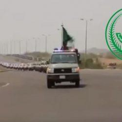صيادون يستعرضون 7 ظباء صادوها.. ومطالبات بالتحقيق في قانونية الصيد