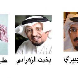 د . هاني أبو راس .. رئيساً للمجلس الاستشاري لمنظمة السياحة