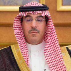 الوفد الإعلامي السعودي يتجول في مزارع وحرفيات وغابات بانتول
