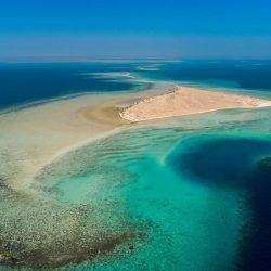 بعد لقائه وزير السياحة التونسي .. آل فهيد : نسعى لترجمة قرارات القمة إلى برامج فعالة