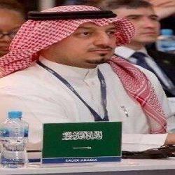 قوائم المرشحين الأولية لانتخابات رئاسة الاتحاد ومجلس إدارته