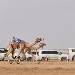 مهرجانات فنية بـ الماتي لامتاع الزوار الخليجيين والأجانب