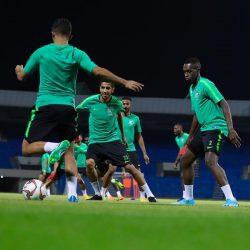 البرتغال تحقق فوزها الأول في التصفيات وتهزم صربيا