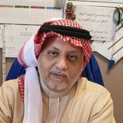 في ذكرى البيعة الخامسة لخادم الحرمين .. مسيرة وطن ورفاهية مواطن