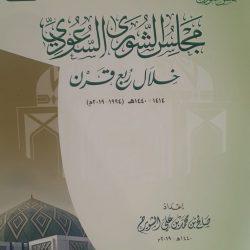 االأهلي وصيفًا بدوري الأمير محمد بن سلمان بعد فوزه على ضمك