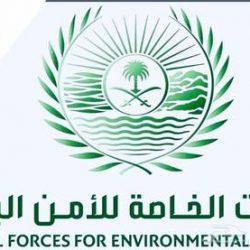 مجلس الوزراء : الوقوف مع الصين ضد كورونا إنساني .. والترحيب بـ الرياض عاصمة للمرأة العربية 2020