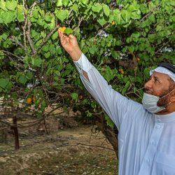 """""""المياه الوطنية"""" : ترسية 5 مشاريع مائية وبيئية بمنطقة مكة بتكلفة 190 مليون ريال"""