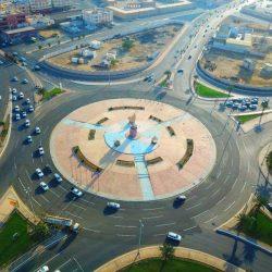 الشركة السعودية لمنتجات الألبان «سدافكو» تُحقّق نتائج متميزة للربع الأول 2020