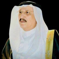 العرضة السعودية تجسد التلاحم بين القيادة والشعب