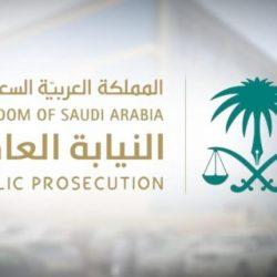 مجلس الوزراء برئاسة خادم الحرمين: التأكيد على خليج قوي وموحد .. وصدور 9 قرارات