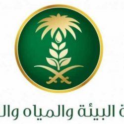 رئيس الاتحاد السعودي للكرة الطائرة يحث لاعبي الأخضر على مضاعفةرالجهود