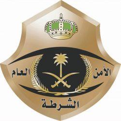 اعتماد طراز المركبات الكهربائية في السعودية