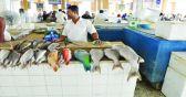 بلدية الخرج تصادر كميات من الأسماك الملوثة في أسواق السيح