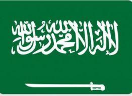 المملكة تأسف لعدم إدانة مجلس الأمن هجمات ميليشيا الحوثي الإرهابية