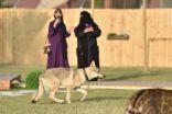 """80 فصيلة من حيوانات العالم في """"سفاري"""" موسم الرياض"""