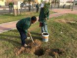 بلدية بقيق تبدأ في برنامج التحسين والتجميل وعمارة البيئة وتعيد تأهيل المزروعات بالجزر الوسطية والساحات والحدائق