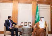 وزير الخارجية يبحث الموضوعات ذات الاهتمام المشترك مع سفير جيبوتي