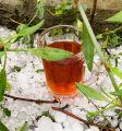 في الباحة .. فناجين الشاي تزهو فوق حبات البرد
