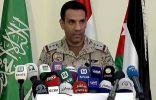 """""""المالكي"""": لدى التحالف خيارات كثيرة في الحديدة بينها عملية عسكرية خاطفة"""