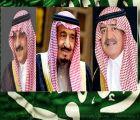 عبر صحيفة اشراق لايف,, مسؤولين ومواطنين ينعون ملك الإنسانية ويبايعون الملك سلمان,, تحديث