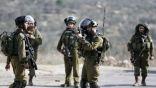 إصابة عشرات الفلسطينيين بالاختناق خلال مواجهات مع قوات الاحتلال الإسرائيلي في قلقيلية