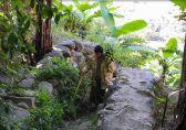 وادي الغيل بالمجاردة تحفة زراعية غنية بالموز والأجواء الخلابة