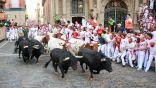 عدم تنظيم فعالية جري الثيران في المدينة القديمة بشقراء