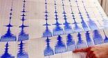 زلزال بقوة 1ر5 درجات يضرب جنوب شرقي تركيا