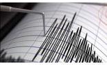 زلزال بقوة 4.3 درجات .. يضرب شرق باكستان