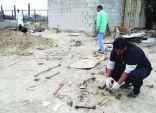 تفاصيل مقبرة القطيف الجماعية وحكم بإعدام المتورطين فيها