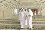 زاره مدير جامعة الباحة .. كرسي العنقري للزيتون يستهدف إنتاج 30 ألف شتلة سنويا