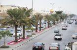 بلدية غرب الدمام تزرع 600 ألف زهرة شتوية في حدائق والجزر الوسطية والجانبية والمثلثات والشوارع الرئيسية والساحات