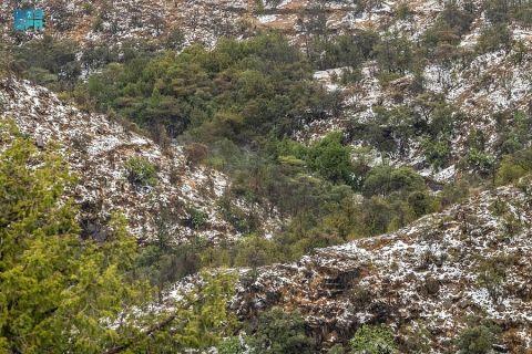 جبال وأودية الباحة .. تكتسي باللون الأبيض