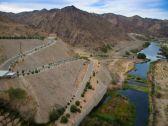 سد بيشة من نعمة  المياه إلى كارثة بيئية مرتقبة