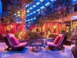 فندق ريكسوس النخلة دبي يطلق تجربة الشاي الصيني