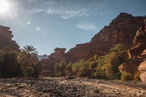 """وجهة سياحية في """"صيف السعودية"""" .. وادي الديسة يأسر زوار تبوك بتضاريسه ومغامراته"""