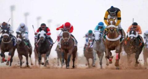 كشف منشطات الخيول بميدان فروسية العقيق بالباحة