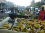 مصادر تكشف أسباب توقيف المسن بائع الفواكه عند الحرم المكي