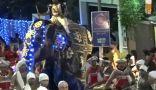 أفيال تثور وتدهس المارة في مهرجان بسريلانكا