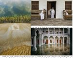 """صور """"الأميرية"""" و""""الأصفر"""" تحصد 3 جوائز في ملتقى """"ألوان السعودية"""""""