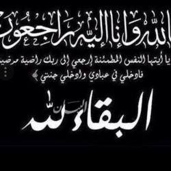 أنور قرقاش : من الإمارات نقول بصوت عال نحن نعول على الرياض