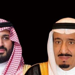 """القمة العربية – الأوروبية تنطلق غدًا الأحد بشرم الشيخ تحت شعار """"في استقرارنا نستثمر"""""""