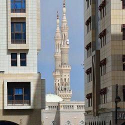 جامعة الملك عبدالعزيز تُعلن فوز 42 مقترحاً بحثياً حول فايروس كورونا المستجد