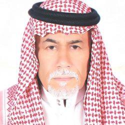 الحركة الثقافية في محافظة بـــــارق