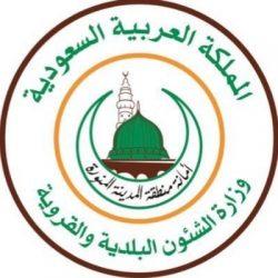 حملات مشتركة للجهات الرقابية بمحافظة ينبع