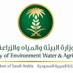 1.8مليون مستفيد من 225 مشروعاً نفذتها شركة المياه الوطنية في 2020