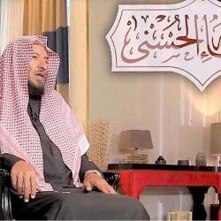 """د. أبو عالي: من زمن """"المشاعيل"""" برؤوس الجبال .. إلى بلد يشارك في قيادة العالم"""